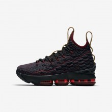 Nike LeBron 15 Basketball Shoes Boys Dark Atomic Teal/Team Red/Muted Bronze/Ale Brown 922811-300