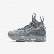 Chaussure de Basket Nike LeBron 15 Garcon Grise/Grise/Metal Doré 922811-005
