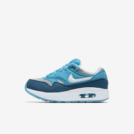 Nike Air Max 1 Lifestyle Shoes Boys Wolf Grey/Light Blue Fury/Blue Force/White 807603-003