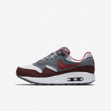 Chaussure Casual Nike Air Max 1 Garcon Blanche/Grise/Rouge/Rouge 807602-109