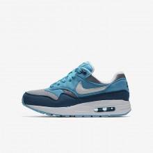 Zapatillas Casual Nike Air Max 1 Niño Gris/Azules Claro/Azules/Blancas 807602-003