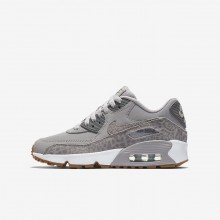 Nike Air Max 90 Lifestyle Shoes Girls Atmosphere Grey/White/Gum Light Brown/Gunsmoke 897987-004