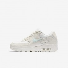 Nike Air Max 90 Lifestyle Shoes Girls Sail/Igloo 833340-107